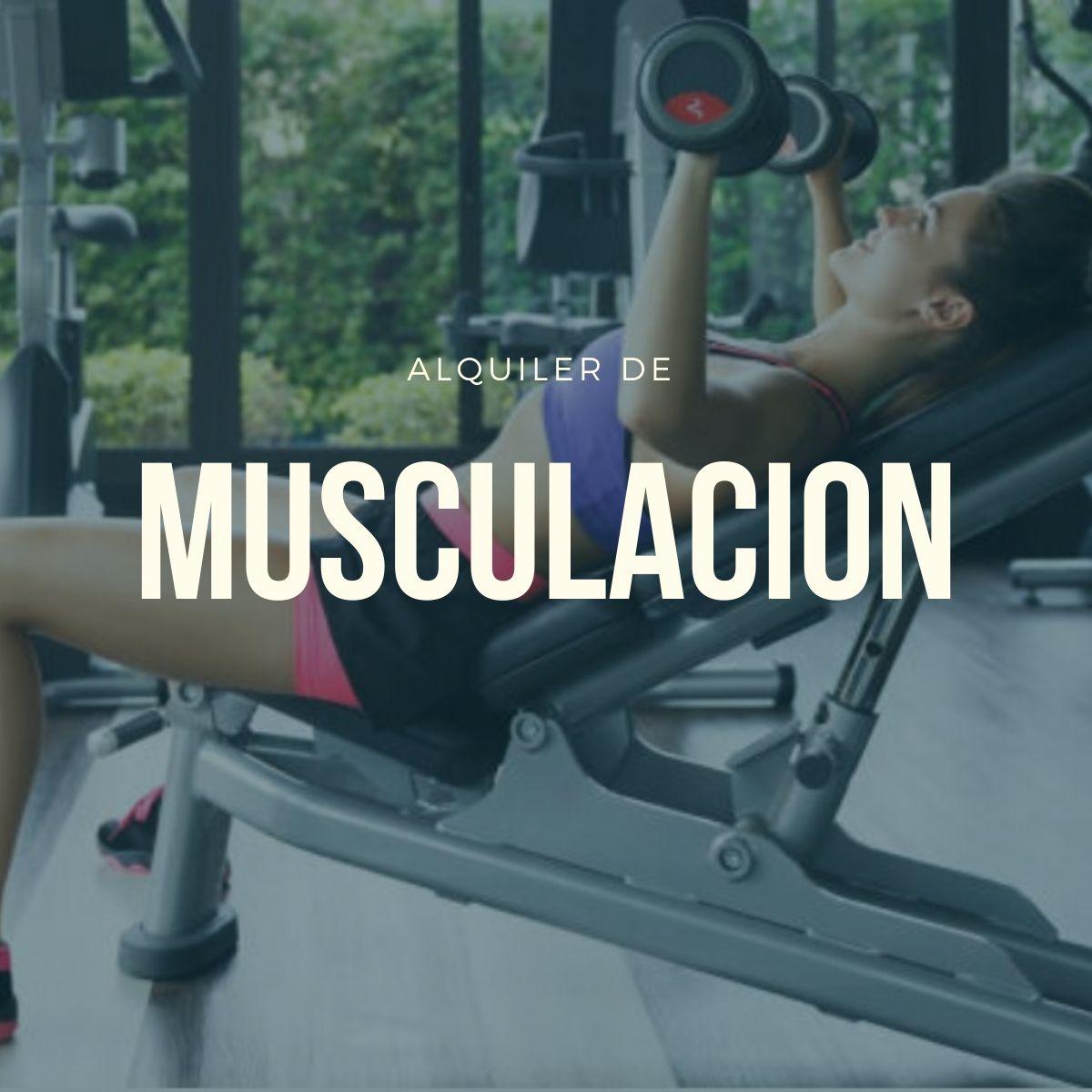 alquiler musculacion